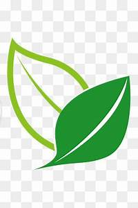 Green Leaf Icon Png | Theleaf.co