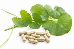 Gotu Kola Extract Uses  Health Benefits  Dosages  U0026 Side Effects