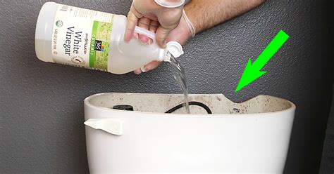 pours white vinegar   toilet tank