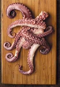 Octopus, Patties