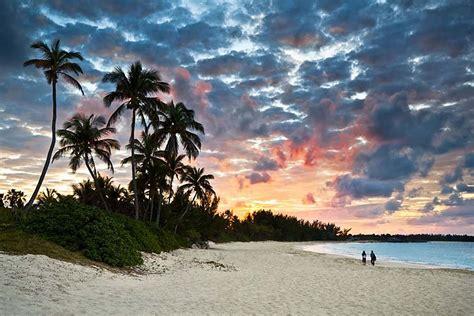 fototapeta palmy na plazi  fototapety   plaze