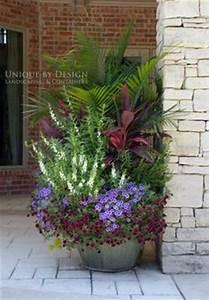 Blumenkübel Bepflanzen Vorschläge : eine welle von farbe ich pflanze s kartoffel reben und coleus in meinen t pfen jedes jahr und ~ Whattoseeinmadrid.com Haus und Dekorationen