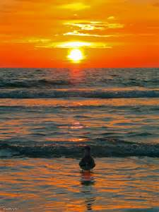 Sunset Clearwater Beach FL
