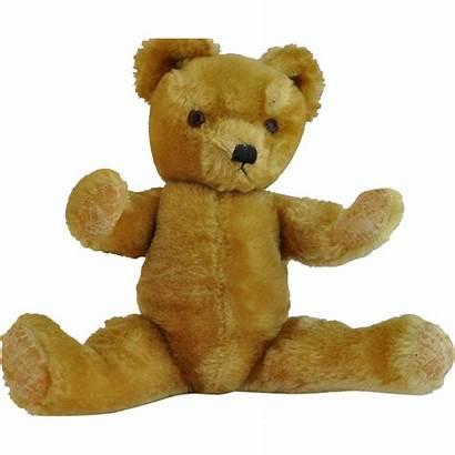Teddy Bear Golden English Eyes Glass Growler