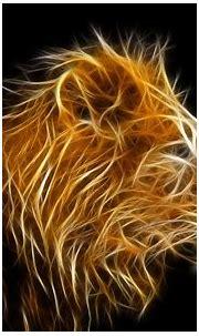 Hdwallpaperx.com | Lion wallpaper, Animal wallpaper, Lion ...