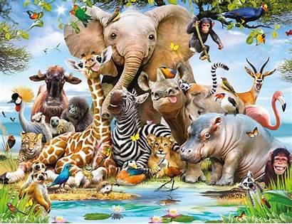 Safari Jungle Wallpapers