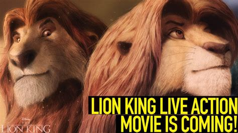 the king live release date release date portal