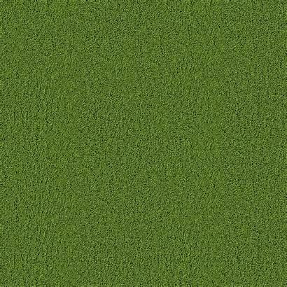 Seamless Texture Carpet Grass Textures Wildtextures Background