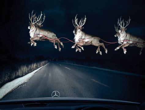 Reindeer Wallpaper Hd by Reindeer Wallpapers Hd Desktop And