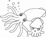 Squid Coloring Pages Baby Cute Realistic Cartoon Undersea Themed sketch template