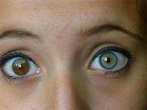 59 best Heterochromia iridum images on Pinterest ...