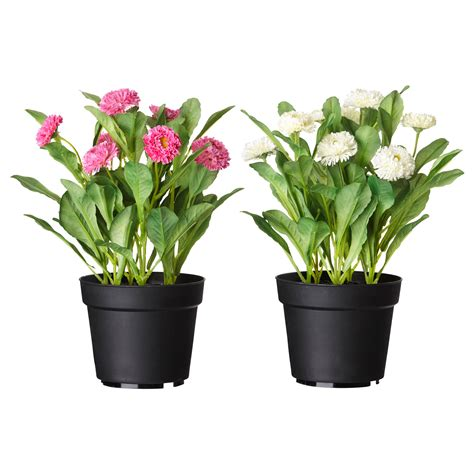 pot a fleur ikea fejka artificial potted plant common assorted colours 12 cm ikea