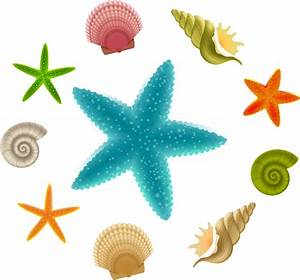 Vector starfish free vector download (139 Free vector) for ...