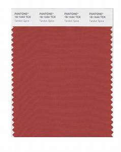 BUY Pantone Smart Swatch 18-1444 Tandoori Spice
