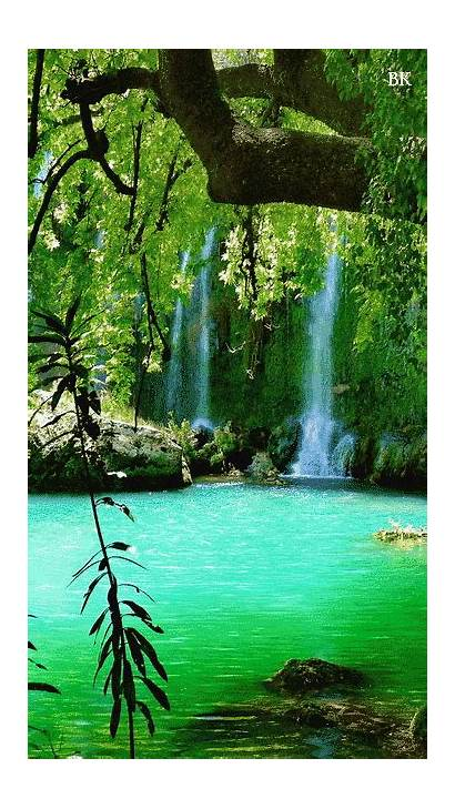 Gifs Nature Places Waterfall Lake Trees Scenery