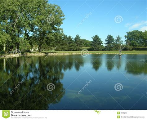 clear blue pond stock images image