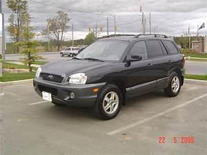 2002 Hyundai Santa Fe - Overview