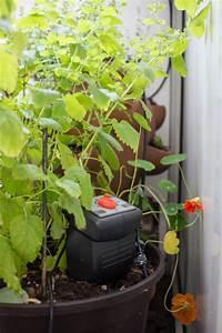 automatisches balkon bewasserungssystem mit gardena dect With garten planen mit gardena balkon bewässerungssystem