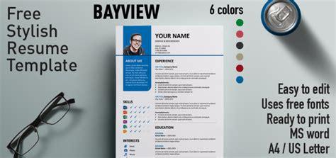 Free Stylish Resume Templates by Bayview Stylish Resume Template