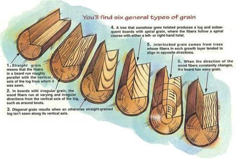 Understanding Wood Grain