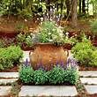 french gardens | French Country Garden Plants - Interior ...