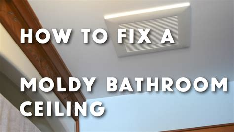 How To Remove Mildew From Drywall Ceiling Integralbookcom