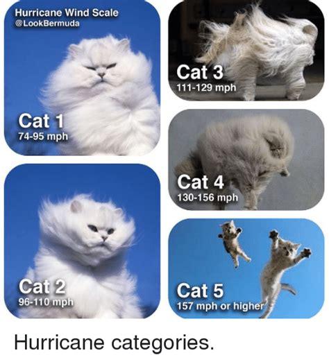 Meme Categories - hurricane wind scale bermuda cat 1 74 95 mph cat 2 96 110 mph cat 3 111 129 mph cat 4 130 156