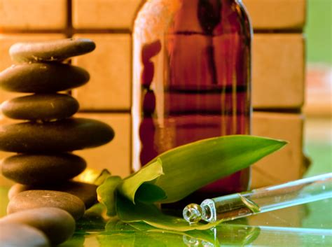 complementary  alternative medicine professions