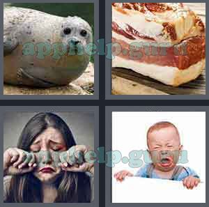 4 pics 1 word 7 letters cheats 4 pics 1 word level 201 to 300 7 letters picture 279 20169   4 Pics 1 Word Answer Level 279