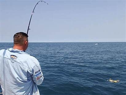 Water Steve Sailfish Darcy Fishing Rompin Fantastic