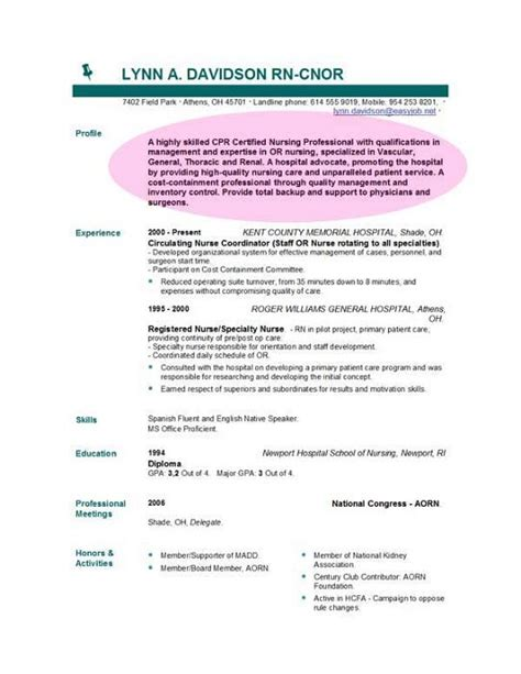 objectives of a professional resume cv objective statement exle resumecvexle