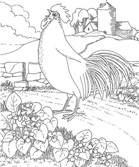 rhode island red coloring page purple kitty
