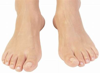 Foot Clipart Library Pain Ankle Clip Laredo