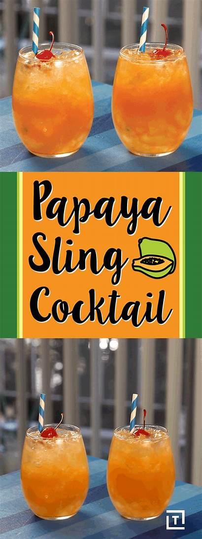 Papaya Sling Cocktail Fresh Recipe Tropical Drink