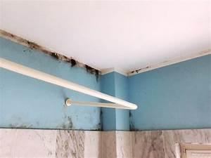 Schimmel An Wand : schimmel adieu durch eine beheizbare tapete in der wand ~ Frokenaadalensverden.com Haus und Dekorationen