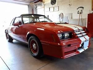 82 GT Fox Body Mustang Convertible??? - FoxStang.com