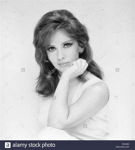 Gina Lollobrigida, 1960s Stock Photo, Royalty Free Image