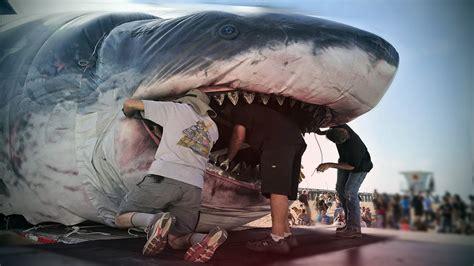 Megalodon Shark Caught on Tape, Largest Great White Shark