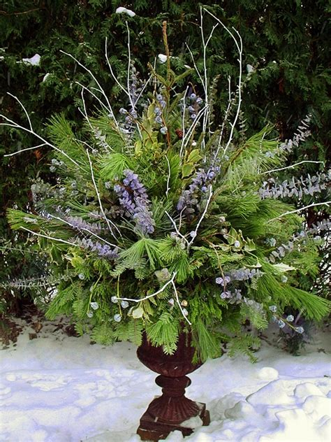 winter containers  terrascapes fine gardening