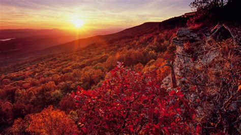Heres When Arkansass Fall Colors Are Expected To Peak