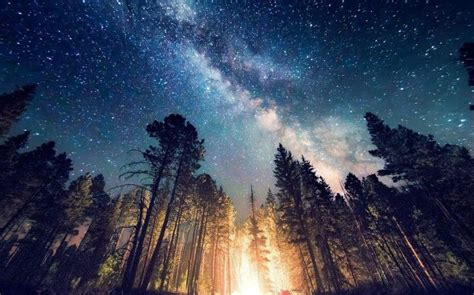 Long Exposure, Starry Night, Milky Way, Galaxy, Nature, Camping, Forest, Landscape, New Mexico Iphone 6 128gb Olx Peshawar Charger With Plug Unlocked Gsm Deals Rate In India Flanco Keyring Keeps Disconnecting And Reconnecting Bangalore