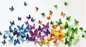 Jane com: Set of 12 3D PVC Butterflies for $5 99