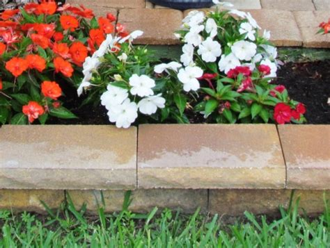 39202 flower bed borders p7nzq5385e23682f63 jpg size 1000x1000 nocrop 1