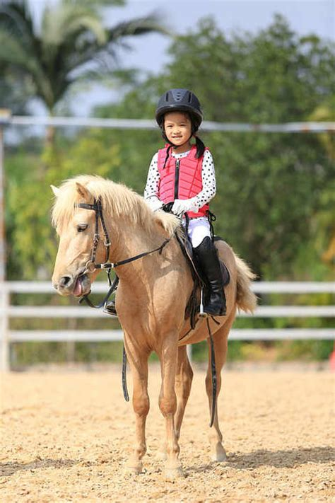 horse riding breeds beginners ride types benefits safety