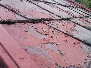Dach Reinigen Kosten : das dach reinigen und versiegeln dachreinigung und ~ Michelbontemps.com Haus und Dekorationen