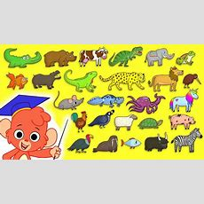 Animal Abc  Learn The Alphabet With 26 Animals For Children  Alphabet Zoo Baby Abcd Youtube