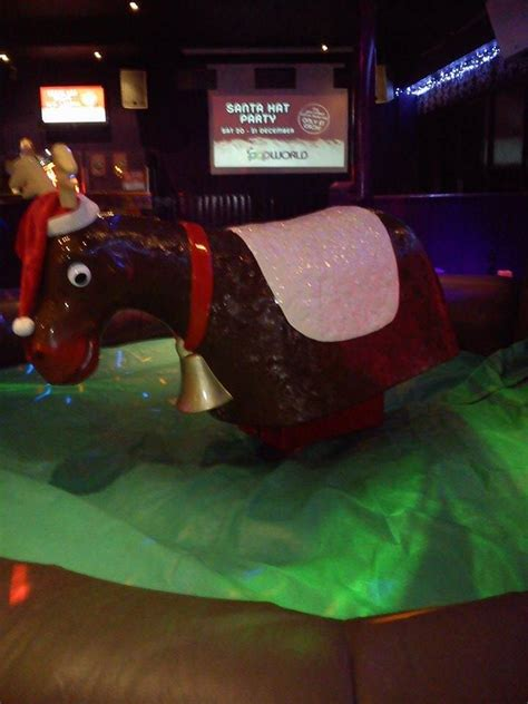rodeo reindeer rides hire inflatable events