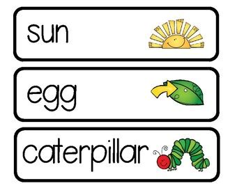 hungry caterpillarbutterfly life cycle word