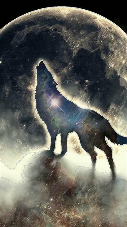 Number Jackson Wolf Loup Ecran Fond Percy
