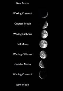 Astronomy for Kids: Learn About the Phases of the Moon